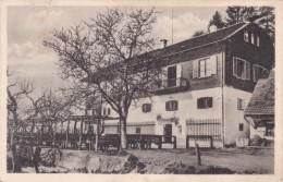 Engelweingarten Bei Stainz, Steiermark (2505-32) * 27. 9. 1949 - Stainz