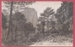 20 - 2A---PIANA--Calanques De Piana-Le Bois De Pins - Autres Communes