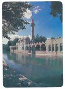 Turkey.Şanlıurfa.Mosque - Turchia