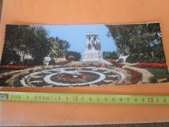 Algérie El-Djezair Alger Panorama Monument Mort Horloge Flor(ex Colonie Française)CPSM Carte Postale Panoramique Afrique - Algiers