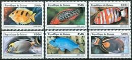 1997 Guinea Pesci Fish Fische Poissons Set MNH** Po14 - Fishes
