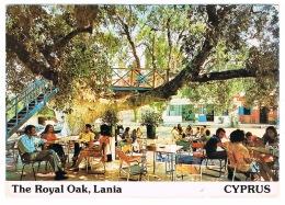 RB 1146 -  Postcard - The Royal Oak Lania Cyprus - Cyprus