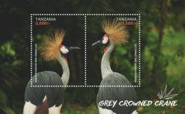 Tanzania-2016-Birds Cranes - Birds