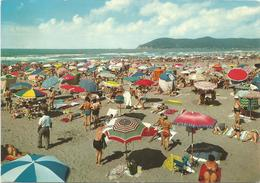 V1024 Marina Di Carrara - Panorama Della Spiaggia - Beach Plage Strand Playa / Viaggiata 1971 - Carrara