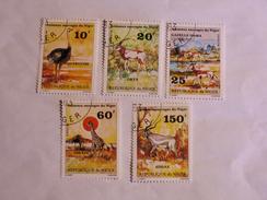 NIGER  1981  LOT# 3  ANIMAL - Niger (1960-...)