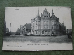 ANTWERPEN - L'AVENUE COGELS VUE PERSPECTIVE ( 2 Scans ) - Antwerpen