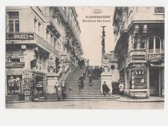 Blankenberge - Blankenberghe - Escaliers Des Lions Phototypie Préaux Frères ,Ghlin - Blankenberge