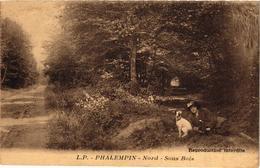 PHALEMPIN ... SOUS BOIS .. FEMME ET SON CHIEN - France