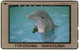 JAPAN F-926 Magnetic NTT [110-011] - Animal, Sea Life, Dolphin - Used