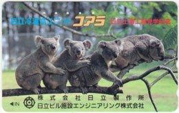JAPAN F-965 Magnetic NTT [110-011] - Animal, Koala - Used