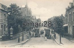 CABOURG - N° 48 - L'AVENUE DE LA MER - Cabourg