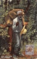 BERMUDES / Uncle Rastus Oldest - Bermudes