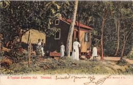 TRINIDAD / A Typical Country Hut - Trinidad