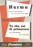 NORMA - TU CHE SAI DI PRIMAVERA  Garay, Leoni  Edizioni Musicali Flaminia - Musica Popolare