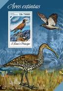SAO TOME E PRINCIPE 2013 SHEET EXTINCT BIRDS AVES EXTINTAS OISEAUX UCCELLI St13619b - Sao Tome And Principe
