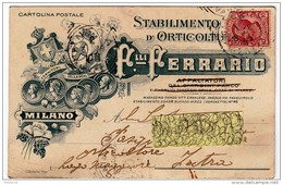 STABILIMENTO D´ORTICOLTURA F.lli FERRARIO - MILANO - 1908 - CARTOLINA POSTALE INTESTATA - Formato Piccolo - Commercio