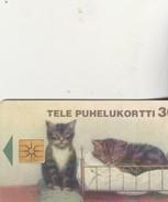 CHATONS 1997 - Finlande