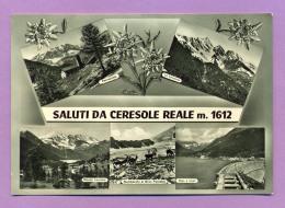 Saluti Da Ceresole Reale - Andere