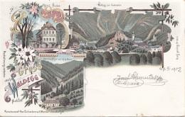 Litho Gruss Aus WALDEGG, Gel.1902, Verlag Schwidernoch, Karte Auf Rückseite Mit Klebespuren S.Scan - Otros