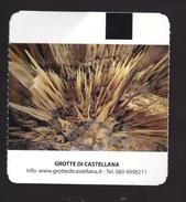 Ticket Grotte Di Castellana - Italia - 2014 Cave Grottes Höhle - Biglietti D'ingresso