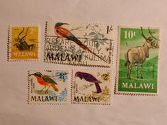 MALAWI  1968-71  LOT# 5  ANIMALS, BIRDS - Malawi (1964-...)