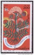 Valeriana Officinalis Medicinal Plant Used In Insomnia Prescribed By Galen And Hippocrates, Pharmacy, Medicine MNH Somal - Medizin