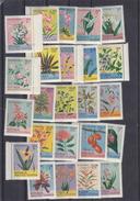 Indonesie - Fleurs - Plantes - Série Complète De 1954 ** - MNH - Indonésie
