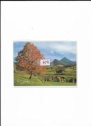 Paysage D'Auvergne, Ref 0417-029 - Auvergne