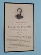 DP Mademoiselle Célina-Madeleine BLEU Morte à SANCOINS Le 26 Janvier 1856-1921 ( Schaefer ) FR !
