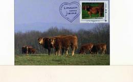 """FDC Race Bovine Limousine Limoges Vaches Collection """"Limousin Comme J'aime"""" Oblitérée à Limoges - Limoges"""
