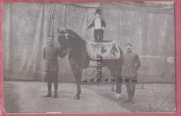 NAIN Sur Cheval - Circo