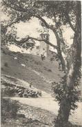 SPOLETO MONTE LUCO SAN GIULIANO - Perugia