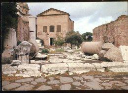 CPM Neuve Italie ROMA Foro Romano La Curia - Chiese
