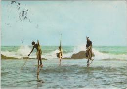 AK - SRI LANKA -  Stilt Fishing - Sri Lanka (Ceylon)