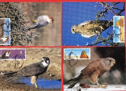 NAMIBIA, 1999, Mint Maxi Cards, Falcons Of Namibia, Sa299-302, F3836 - Namibië (1990- ...)