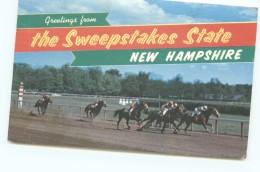 Horse Race At SRockingham Park, Salem NH 1963 - Salem