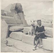 Photographie D'Amateur/Agrandissement D'époque Avec Légende /Egypte /Au Pied Du Sphinx/ 1943                    PHOTN237 - Afrique