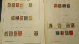 F0008 LOT FEUILLES TIMBRES ANCIENS SUISSE A TRIER BELLE COTE DÉPART 10€ - Verzamelingen (in Albums)