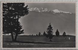 Crans S/Sierre - Le Golf Et Le Mont Blanc - Photo: Perrochet No. 9145 - VS Valais