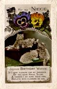 CATS - NIECE - JOYOUS BIRTHDAY  RP - ROTARY C323 - Cats