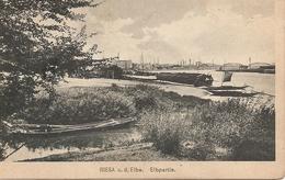 Allemagne : RIESA  Elbepartie    Réf 2841 - Riesa