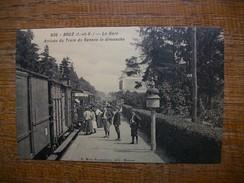 """Réédition , Bruz , La Gare Arrivée Du Train De Rennes Le Dimanche """" Carte Avec Belle Animation """" - France"""