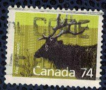 Canada 1988 Oblitéré Used Cervus Elaphus Canadensis Wapiti Mammifère Herbivore Cervidé