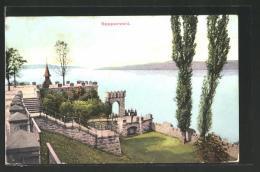 CPA Rapperswil, Vue De Burg, Vue Partielle - SG St. Gall