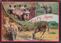 °°° GF239 - UGANDA - OUT OF AFRICA - 1998 With Stamps °°° - Uganda