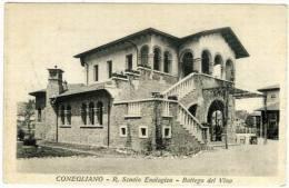 Conegliano (Tv), R.Scuola Enologica -... - Italië
