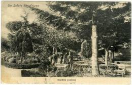 Ariano (Av), Giardini Pubblici Con An... - Italië