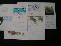Estalnd ,  3 Cv.  Lot Modern Cv. Animals , Birds Bis 2003 - Estland