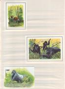 BUZIN / WWF / LES 3 BLOCS EMIS / ZAIRE 1984 - RWANDA 1985 - RDC 2002 - W.W.F.