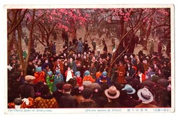 JAPON . TOKYO . THE CHERRY TREES AT ASUKAYAMA . FLOWER SEASON AT TOKYO - Réf. N°1904 - - Tokyo
